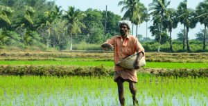 eNAM: A stride towards making the Indian Agri-Supply chain more efficient